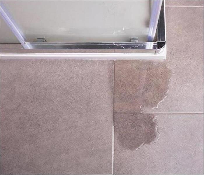Water leaking on floor tiles from shower