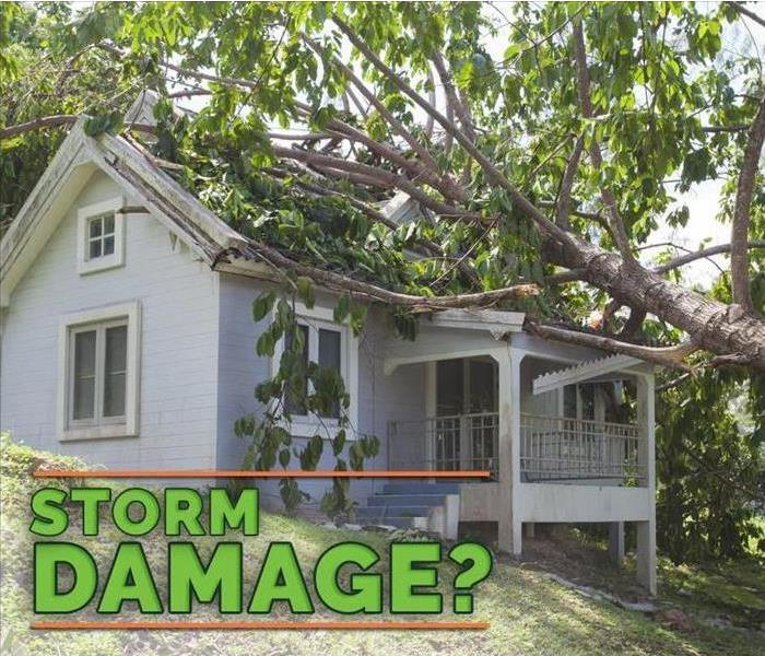 "Image of fallen tree on top of a house damaging the roof. With green letters asking ""Storm damage?"""