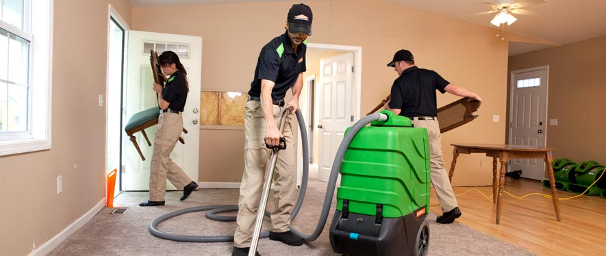 Bountiful, UT cleaning services