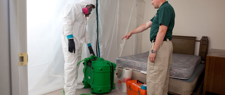 Bountiful, UT mold removal process